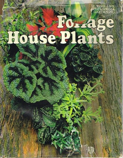 Image for Foliage House Plants