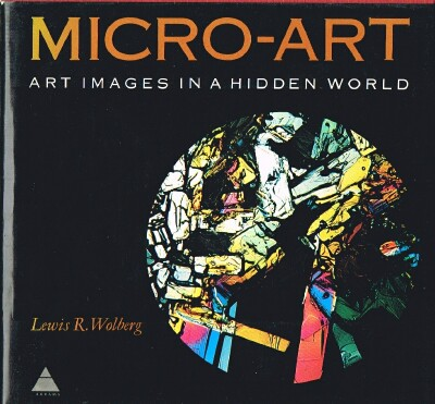 Image for Micro-Art Art Images in a Hidden World