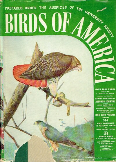 Image for Birds of America