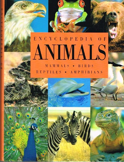 Image for Encyclopedia of Animals: Mammals, Birds, Reptiles, Amphibians