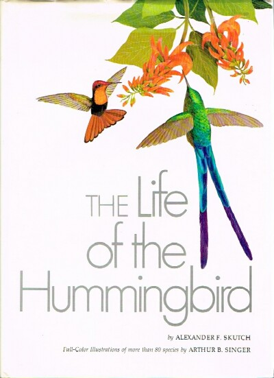 Image for The Life of the Hummingbird