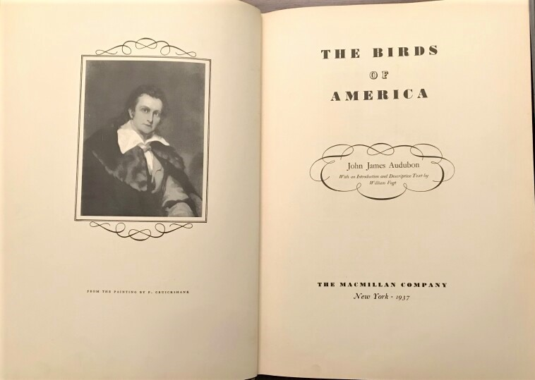 Image for The Birds of America