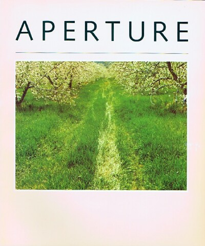 Image for Aperture (No. 85, 1981)